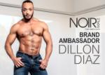 Adult Industry Provides Platform to Gay Men of Color